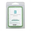 Focus Essential Oil Infused Wax Melt - Focus essential oil infused wax melt.