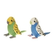 """6"""" Parakeet Assortment"""