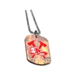 Acrylic Dog Tags - Acrylic dog tag includes a 24-inch long number-3 ball chain.