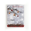 Evergreen Tree Seed Packet