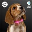 "Pink Light Up Dog Collars, Small to Medium - Large to Medium Pink Light Up Dog Collars, Adjustable Length 9.7"" to 13.7"""
