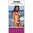 Swimsuits - 12 beautiful women are featured in this attention-getting calendar.