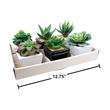 ARTIFICIAL 2.5inch SQUARE POTTED SUCCULENT - ARTIFICIAL 2.5INCH SQUARE POTTED SUCCULENT
