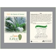 Kale 'Lacinato'  Seed Packet - Imprint three areas in full color on our standard size seed packet.