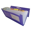 """Coupon Check File - 10 3/8"""" x 5 3/8"""" x 1"""" translucent ribbed poly coupon and check file with 12 tabbed pockets and dual business card holder"""