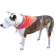 Pet triangle bandanna with reflective binding - medium - Colored muslin bandana pet triangle with a high thread count.