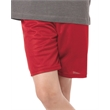 """Badger Mini Mesh Youth 6'' Inseam Shorts - Youth, polyester 6"""" inseam mini mesh shorts. Blank product."""
