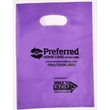 """Die Cut Handle Plastic Bag Frosted - Frosted die cut plastic shopping bags.(9 """" x 12 """") Flexo Ink"""