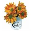 Flower Starter Kit in Kraft Box - Flower Starter Kit in Kraft Box