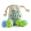 Earth Day Seed Bomb Bag