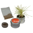 Desktop Grass Garden - Great idea for a grow with us theme, health and wellness clients or Earth Day!