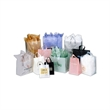 Plastic Shopping  Bags - Frosted 3 mil Soft loop handle bags.