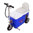 Motorized cooler - Motorized cooler, its all about you, the cooler and riding.