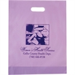 "Frosted Plastic Die Cut Bag - Flexo Ink - Frosted Die Cut Plastic Bags (12""x15""x3"") - Flexo Ink"