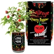 Cherry Pepper All Included Growing Kit  - Just open...Water...Watch it Grow conveniently in a colorful can
