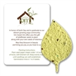 Basil Leaf Mini Gift Pack With Seed Paper