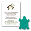 Turtle Mini Gift Pack With Seed Paper