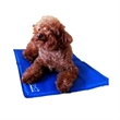 Cooling Dog Mat - Dog mat with cooling core and liquid.