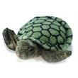 """8"""" Splish Splash Turtle"""